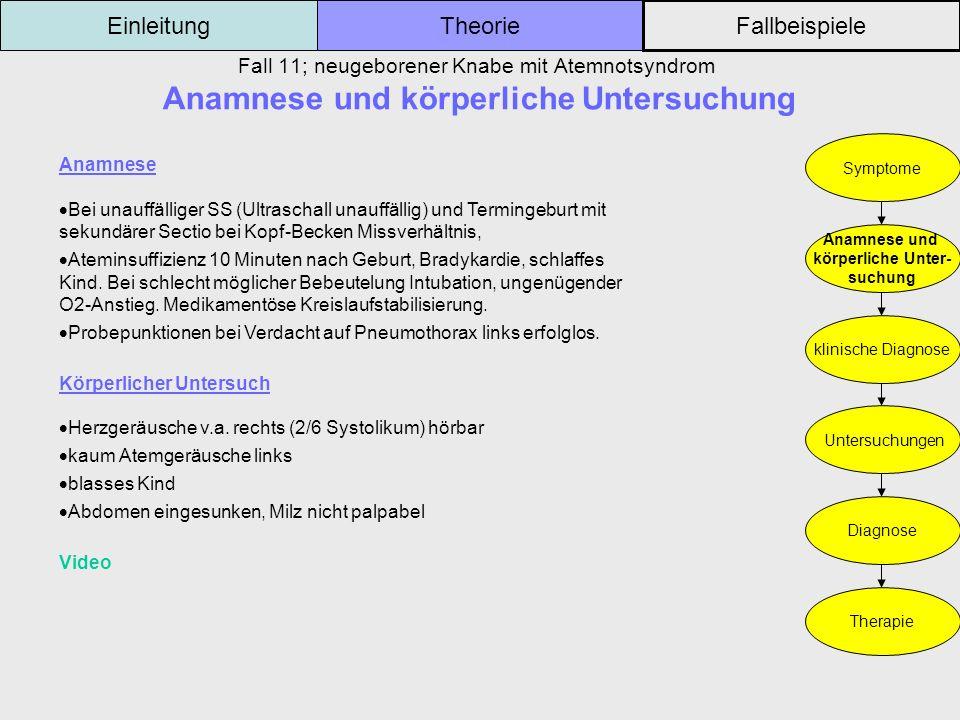 Fall 11; neugeborener Knabe mit Atemnotsyndrom Anamnese und körperliche Untersuchung Einleitung Fallbeispiele Theorie Symptome Anamnese und körperlich