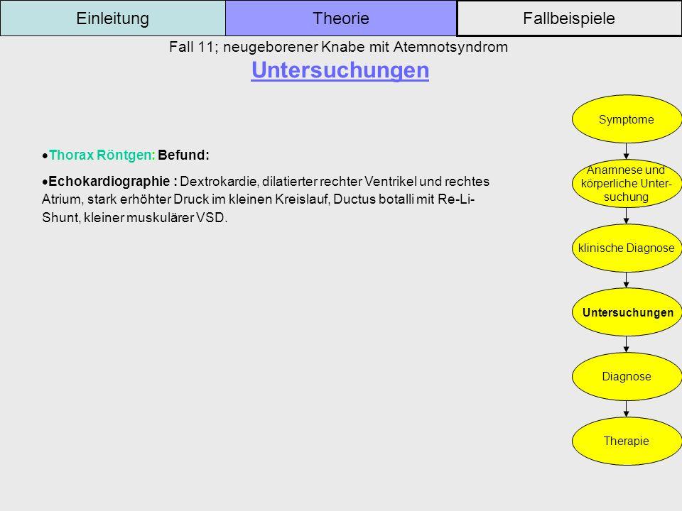 Fall 11; neugeborener Knabe mit Atemnotsyndrom Untersuchungen Einleitung Fallbeispiele Theorie Symptome Anamnese und körperliche Unter- suchung klinis