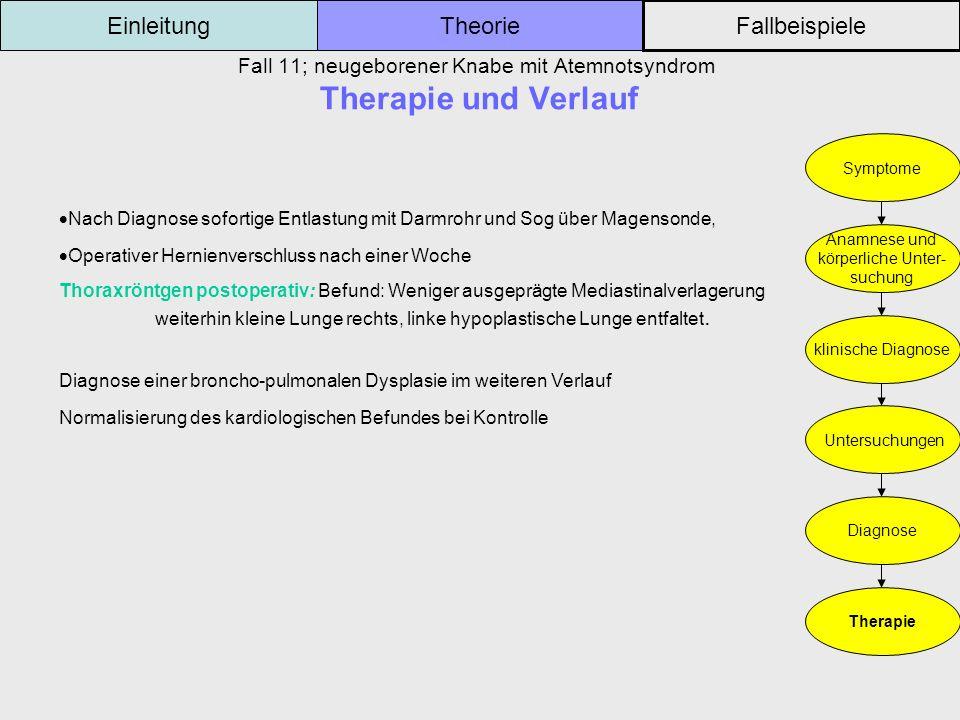 Fall 11; neugeborener Knabe mit Atemnotsyndrom Therapie und Verlauf Einleitung Fallbeispiele Theorie Symptome Anamnese und körperliche Unter- suchung