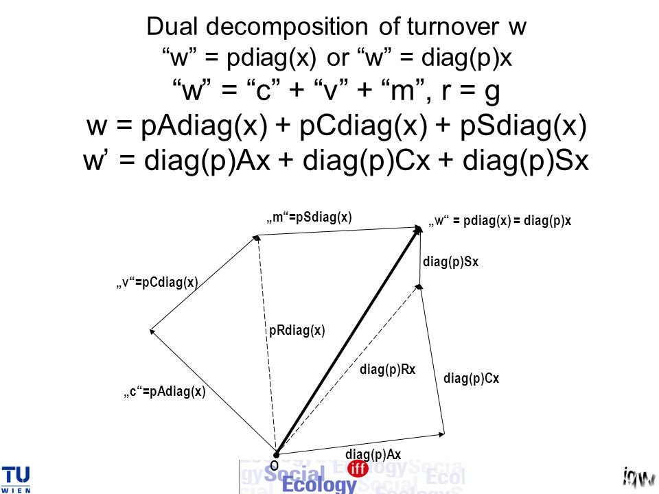 Dual decomposition of turnover w w = pdiag(x) or w = diag(p)x w = c + v + m, r = g w = pAdiag(x) + pCdiag(x) + pSdiag(x) w = diag(p)Ax + diag(p)Cx + d