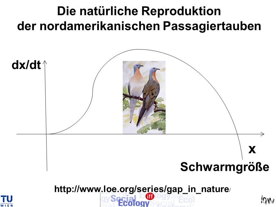 Die natürliche Reproduktion der nordamerikanischen Passagiertauben x Schwarmgröße dx/dt http://www.loe.org/series/gap_in_nature /