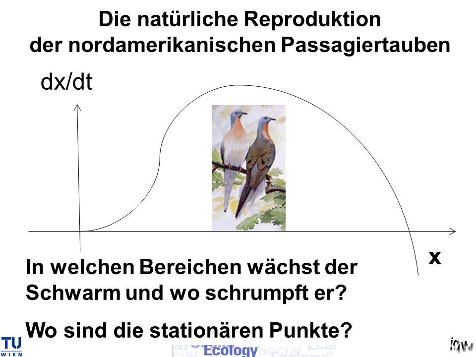 x dx/dt In welchen Bereichen wächst der Schwarm und wo schrumpft er? Wo sind die stationären Punkte? Die natürliche Reproduktion der nordamerikanische