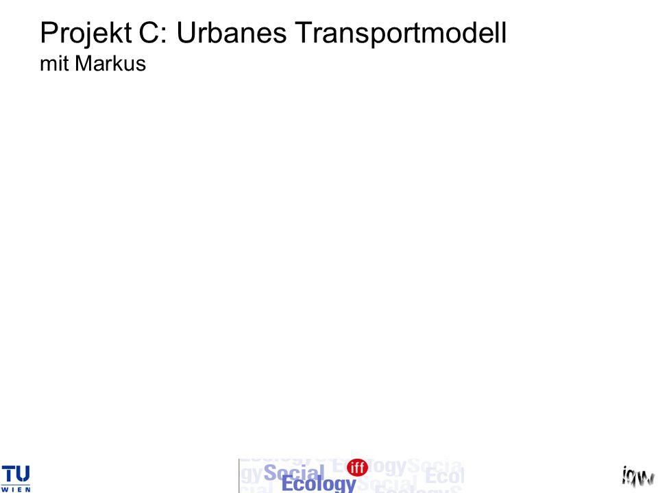 Projekt C: Urbanes Transportmodell mit Markus