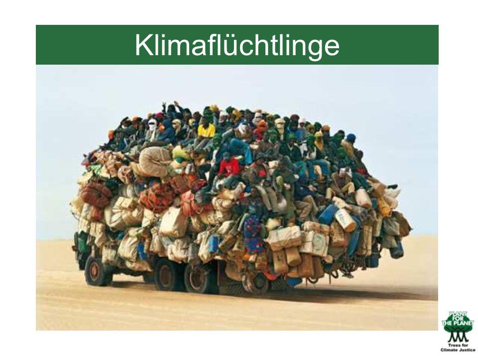 Klimaflüchtlinge