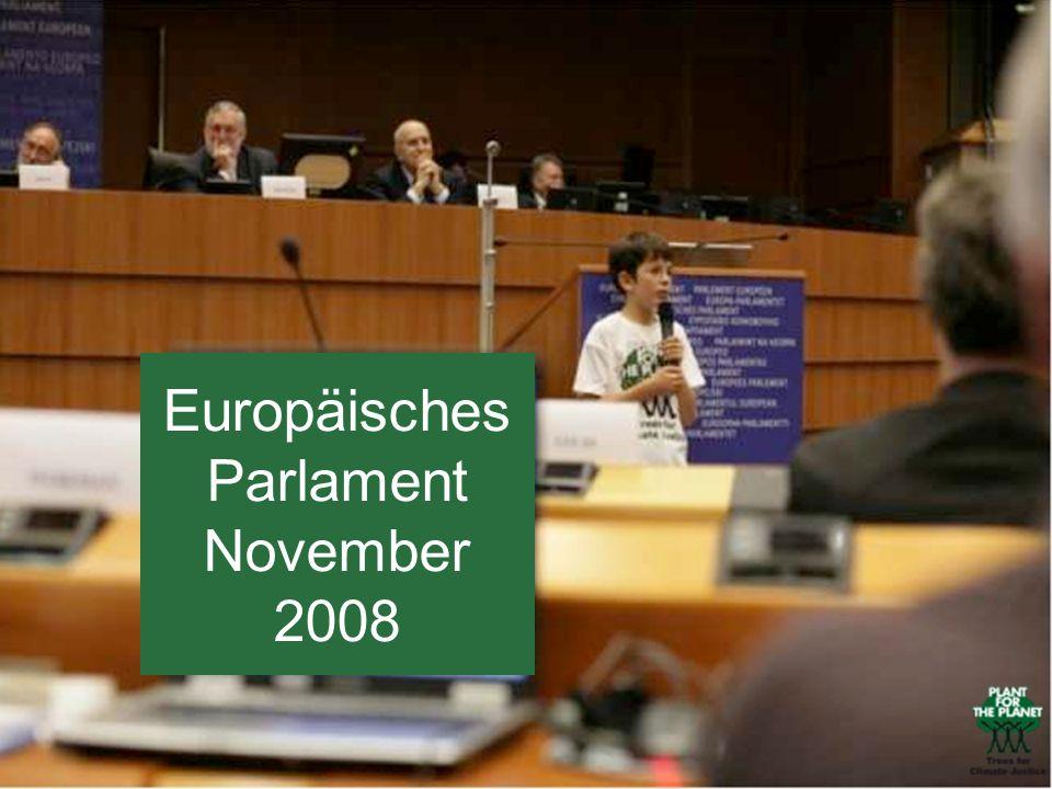 Europäisches Parlament November 2008