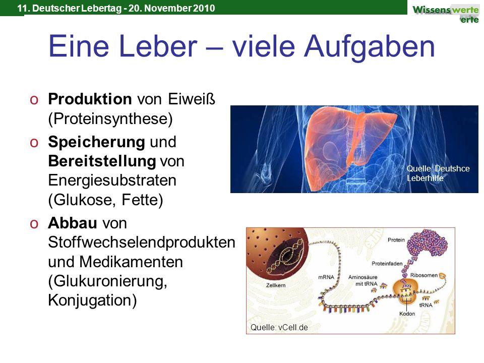11. Deutscher Lebertag - 20. November 2010 Eine Leber – viele Aufgaben oProduktion von Eiweiß (Proteinsynthese) oSpeicherung und Bereitstellung von En
