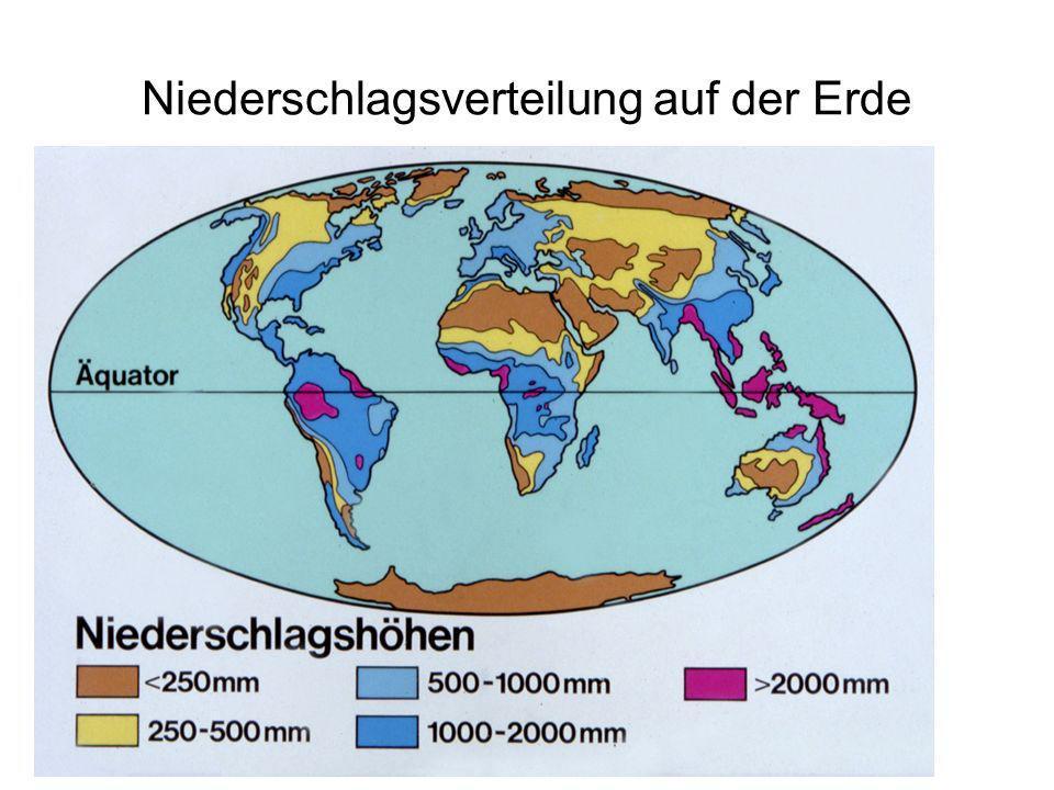 RI Distrikt 1830 PETS 05.04.2008 Niederschlagsverteilung auf der Erde
