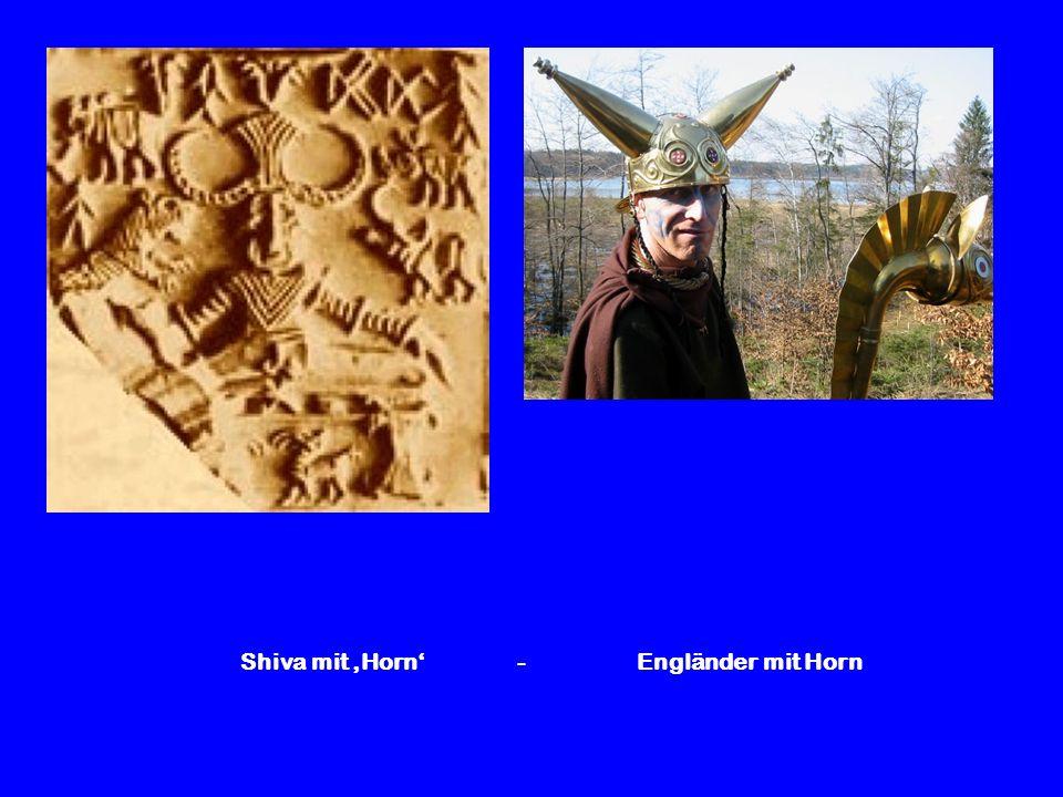 Shiva mit Horn - Engländer mit Horn