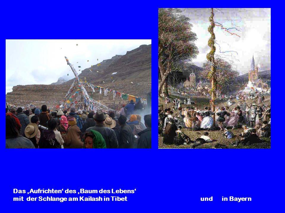 Das Aufrichten des Baum des Lebens mit der Schlange am Kailash in Tibet und in Bayern