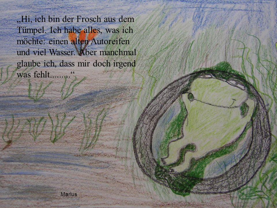 Eines Tages beobachtete der Frosch zwei Eichkätzchen, die sich in einem hohlen Baum umarmten und küssten.