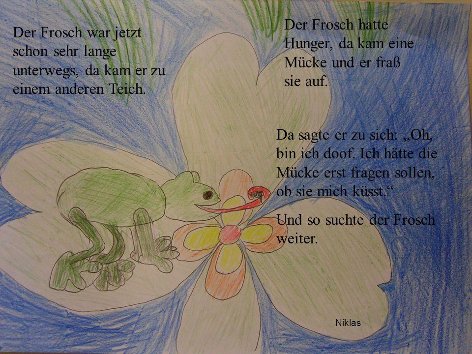 Der Frosch war jetzt schon sehr lange unterwegs, da kam er zu einem anderen Teich. Der Frosch hatte Hunger, da kam eine Mücke und er fraß sie auf. Da