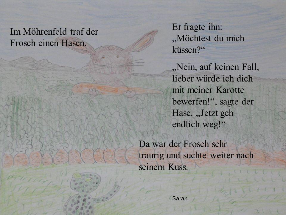 Im Möhrenfeld traf der Frosch einen Hasen. Er fragte ihn: Möchtest du mich küssen? Nein, auf keinen Fall, lieber würde ich dich mit meiner Karotte bew