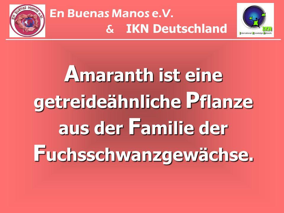A maranth ist eine getreideähnliche P flanze aus der F amilie der F uchsschwanzgewächse. En Buenas Manos e.V. & IKN Deutschland