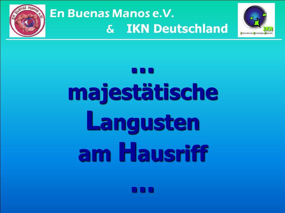 ...für den B ezug des staatlich garantierten täglichen B rötchens: En Buenas Manos e.V.