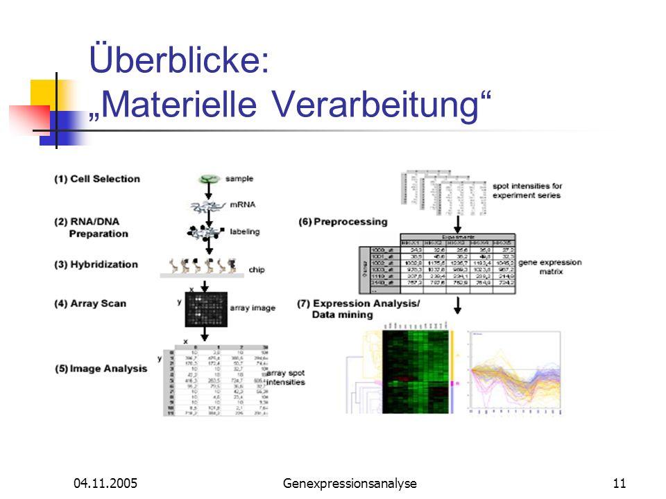 04.11.2005Genexpressionsanalyse11 Überblicke: Materielle Verarbeitung