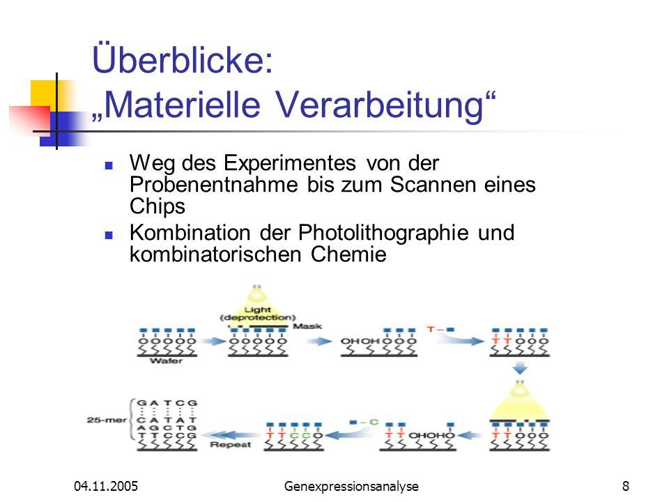 04.11.2005Genexpressionsanalyse9 Überblicke: Materielle Verarbeitung Entstehung der Proben, die an einem Silizium-Wafer festgelegt ist Proben: 25mere Oligonukleotide