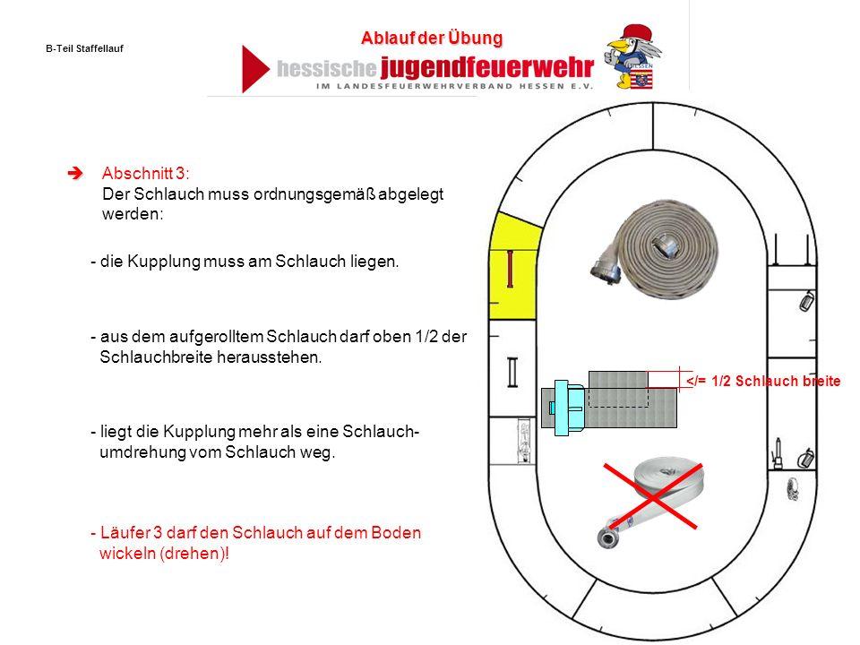 Abschnitt 3: Der Schlauch muss ordnungsgemäß abgelegt werden: - die Kupplung muss am Schlauch liegen. - aus dem aufgerolltem Schlauch darf oben 1/2 de