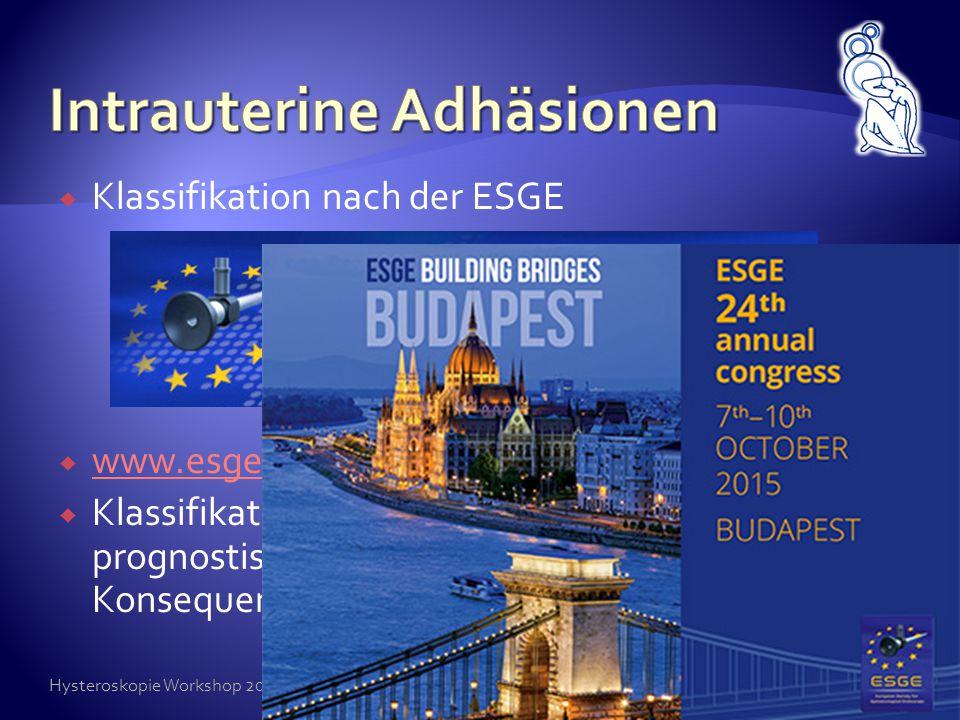  Klassifikation nach der ESGE  www.esge.org www.esge.org  Klassifikation notwendig, da daraus prognostische und therapeutische Konsequenzen resulti
