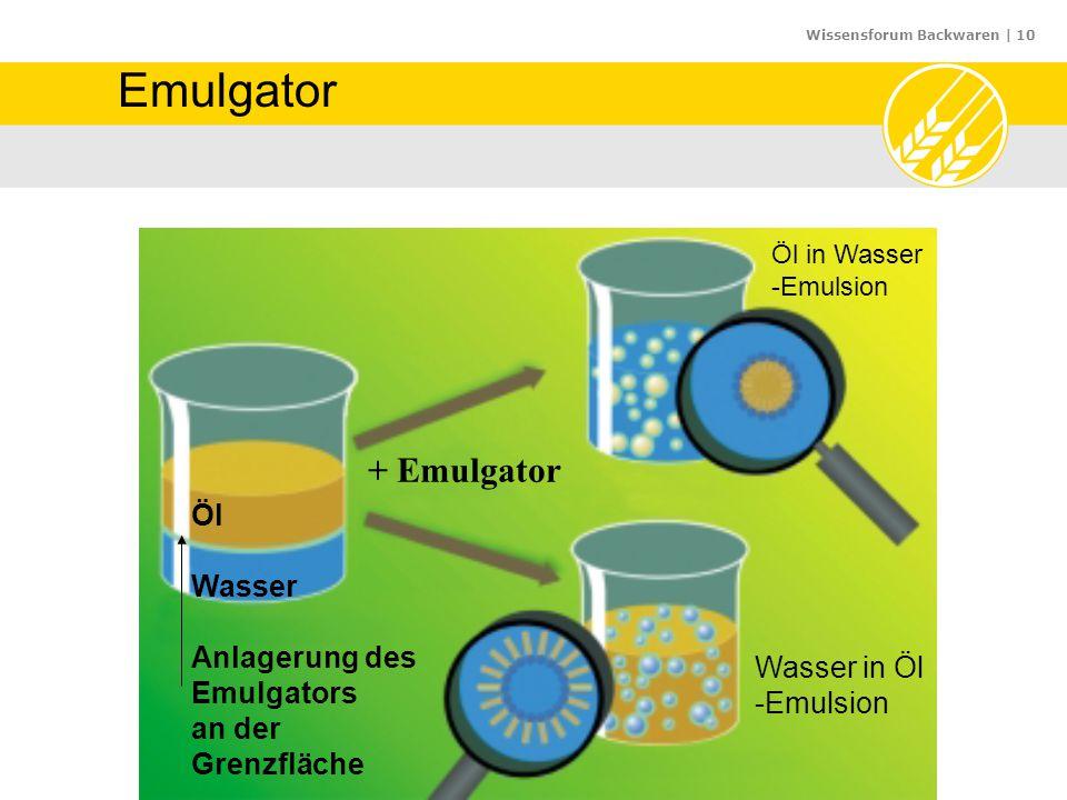 Wissensforum Backwaren | 10 Emulgator Öl Wasser Anlagerung des Emulgators an der Grenzfläche + Emulgator Öl in Wasser -Emulsion Wasser in Öl -Emulsion