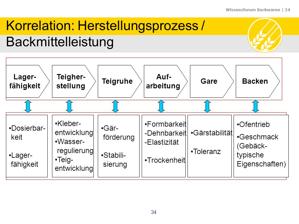 Wissensforum Backwaren | 34 34 Korrelation: Herstellungsprozess / Backmittelleistung Auf- arbeitung Gare Teigher- stellung Teigruhe Lager- fähigkeit B
