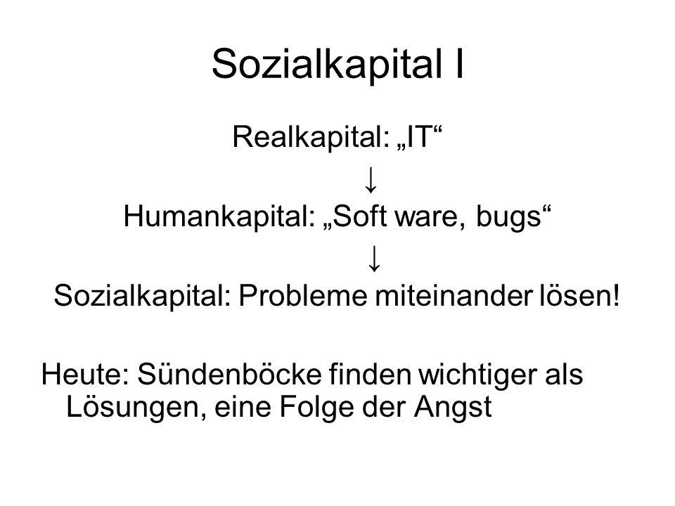 "Sozialkapital I Realkapital: ""IT"" ↓ Humankapital: ""Soft ware, bugs"" ↓ Sozialkapital: Probleme miteinander lösen! Heute: Sündenböcke finden wichtiger a"