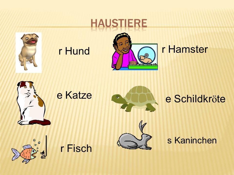 r Hund e Katze r Fisch r Hamster e Schildkr ö te s Kaninchen