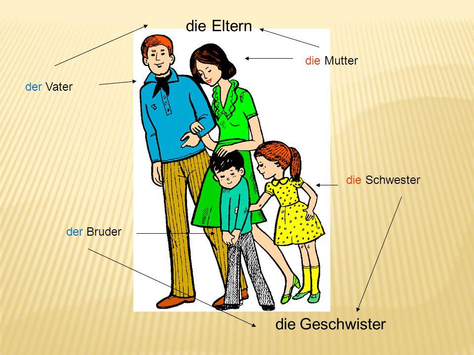 die Mutter der Vater die Schwester der Bruder die Eltern die Geschwister