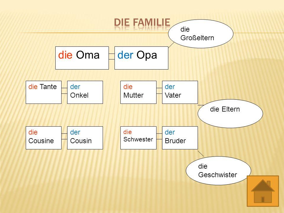 die Oma die Tanteder Onkel der Vater die Mutter die Schwester der Bruder der Cousin die Cousine der Opa die Großeltern die Eltern die Geschwister