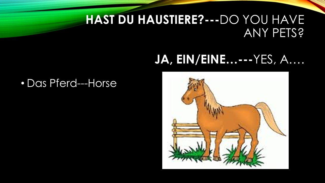 HAST DU HAUSTIERE --- DO YOU HAVE ANY PETS JA, EIN/EINE…--- YES, A…. Das Pferd---Horse