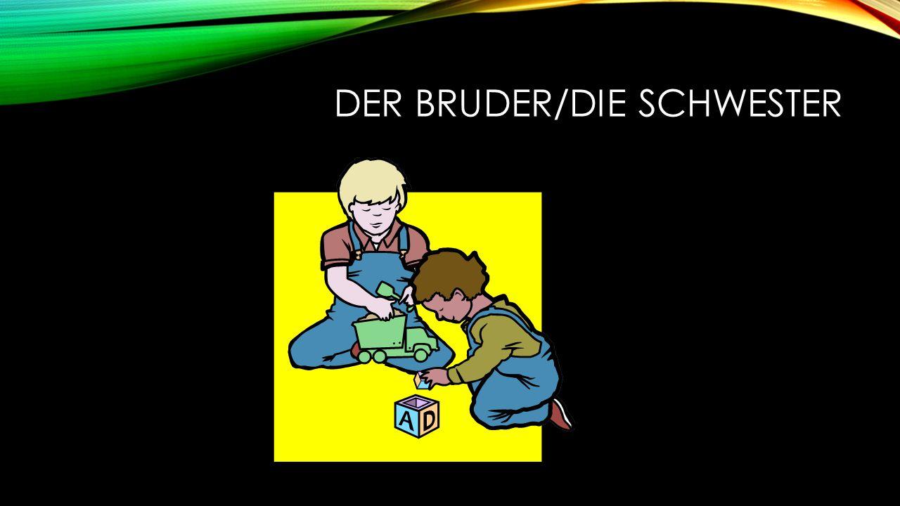 DER BRUDER/DIE SCHWESTER