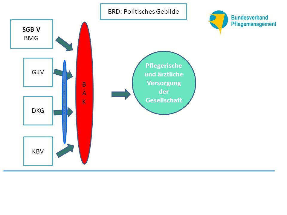 KBV DKG GKV SGB V BMG BÄKBÄK BRD: Politisches Gebilde Deutscher Pflegerat § 137 SGB V§ 137 SGB V Pflegerische und ärztliche Versorgung der Gesellschaft