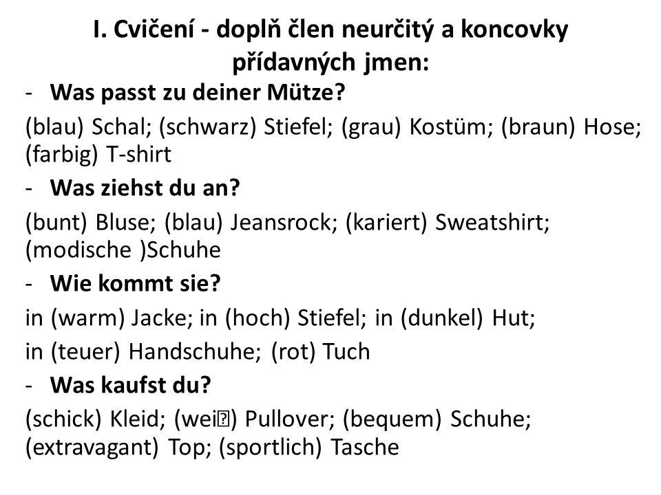I. Cvičení - doplň člen neurčitý a koncovky přídavných jmen: -Was passt zu deiner Mütze.