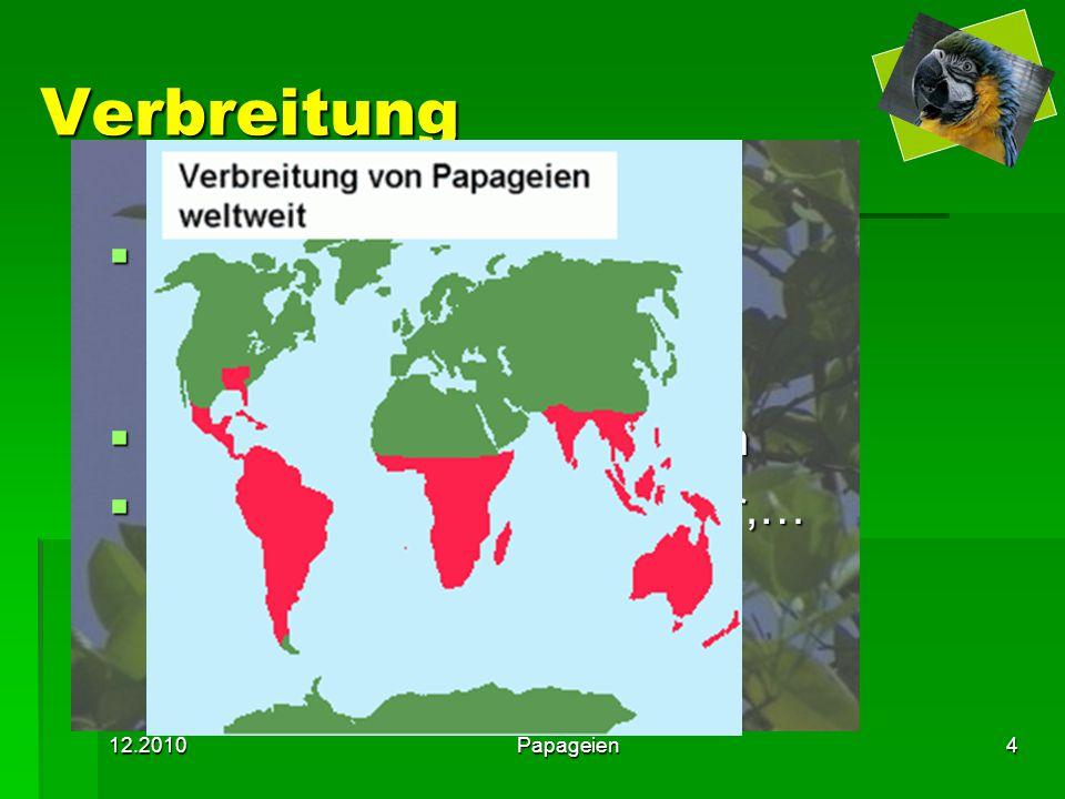 12.2010Papageien4 Verbreitung  leben auf allen Kontinenten ausgenommen Europa und Antarktis  meist Tropen und Subtropen  Regenwälder, alpine Wälder