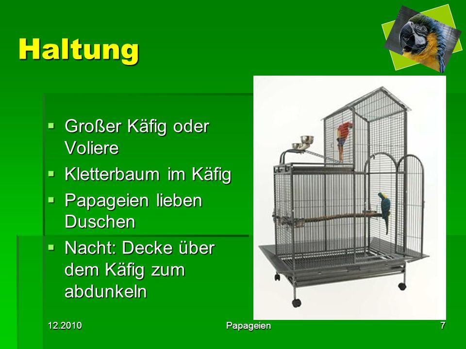 12.2010Papageien7 Haltung  Großer Käfig oder Voliere  Kletterbaum im Käfig  Papageien lieben Duschen  Nacht: Decke über dem Käfig zum abdunkeln