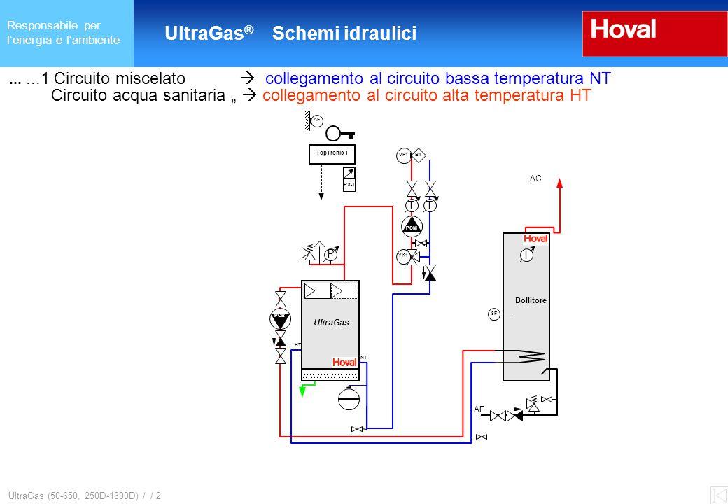 """Responsabile per l'energia e l'ambiente UltraGas ® (125-650) und (250D-1300D) UltraGas (50-650, 250D-1300D) / / 2......1 Circuito miscelato  collegamento al circuito bassa temperatura NT Circuito acqua sanitaria """"  collegamento al circuito alta temperatura HT UltraGas ® Schemi idraulici NT HT NT HT TT PCM M YK1 B1VF1 Bollitore"""
