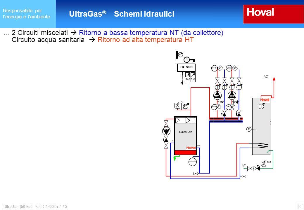 Responsabile per l'energia e l'ambiente UltraGas ® (125-650) und (250D-1300D) UltraGas (50-650, 250D-1300D) / / 3...