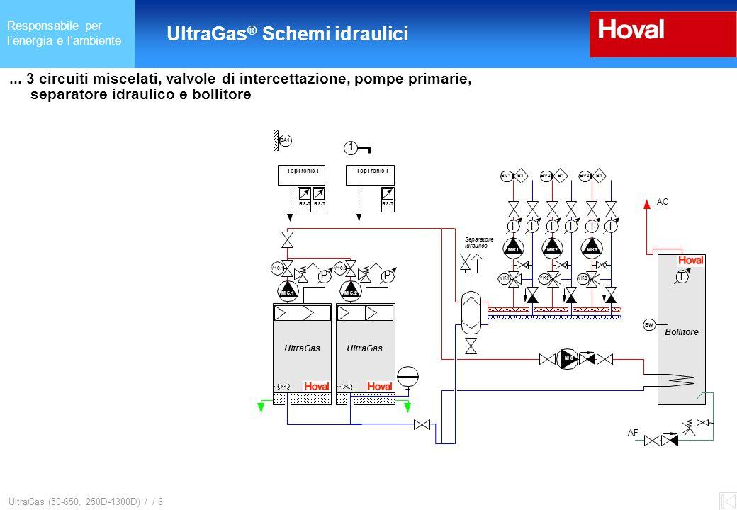 Responsabile per l'energia e l'ambiente UltraGas ® (125-650) und (250D-1300D) UltraGas (50-650, 250D-1300D) / / 6...