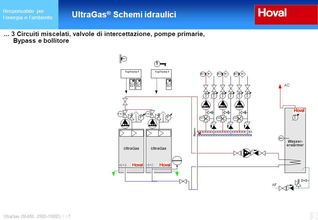 Responsabile per l'energia e l'ambiente UltraGas ® (125-650) und (250D-1300D) UltraGas (50-650, 250D-1300D) / / 7...