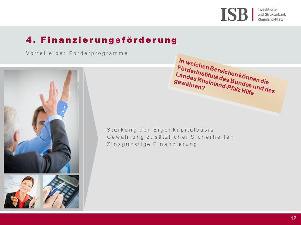 12 4. Finanzierungsförderung Vorteile der Förderprogramme Stärkung der Eigenkapitalbasis Gewährung zusätzlicher Sicherheiten Zinsgünstige Finanzierung