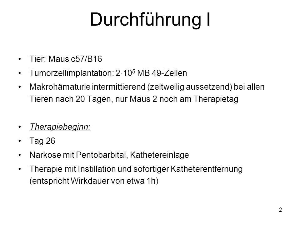 2 Durchführung I Tier: Maus c57/B16 Tumorzellimplantation: 2·10 5 MB 49-Zellen Makrohämaturie intermittierend (zeitweilig aussetzend) bei allen Tieren
