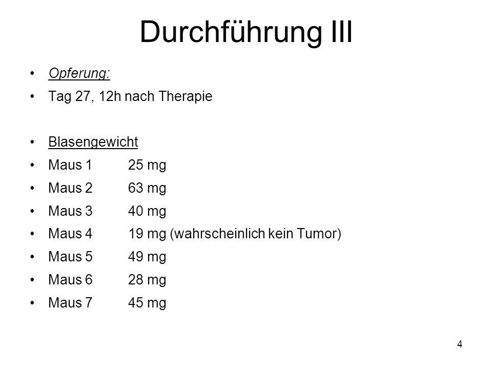 4 Durchführung III Opferung: Tag 27, 12h nach Therapie Blasengewicht Maus 125 mg Maus 263 mg Maus 340 mg Maus 419 mg (wahrscheinlich kein Tumor) Maus