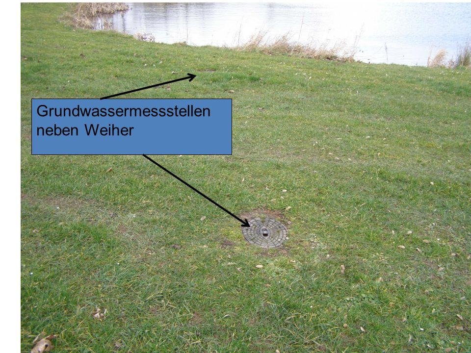 Folie 10 r Grundwassermessstellen neben Weiher