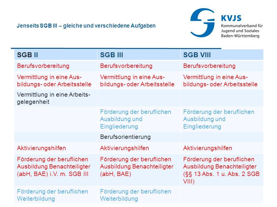 Jenseits SGB III – gleiche und verschiedene Aufgaben SGB IISGB IIISGB VIII Berufsvorbereitung Vermittlung in eine Aus- bildungs- oder Arbeitsstelle Ve