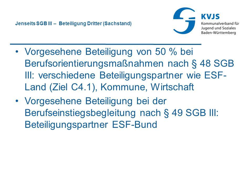 Jenseits SGB III – Beteiligung Dritter (Sachstand) Vorgesehene Beteiligung von 50 % bei Berufsorientierungsmaßnahmen nach § 48 SGB III: verschiedene B