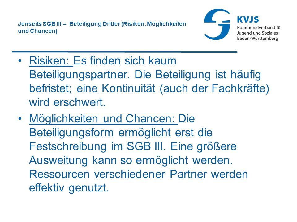 Jenseits SGB III – Beteiligung Dritter (Risiken, Möglichkeiten und Chancen) Risiken: Es finden sich kaum Beteiligungspartner. Die Beteiligung ist häuf