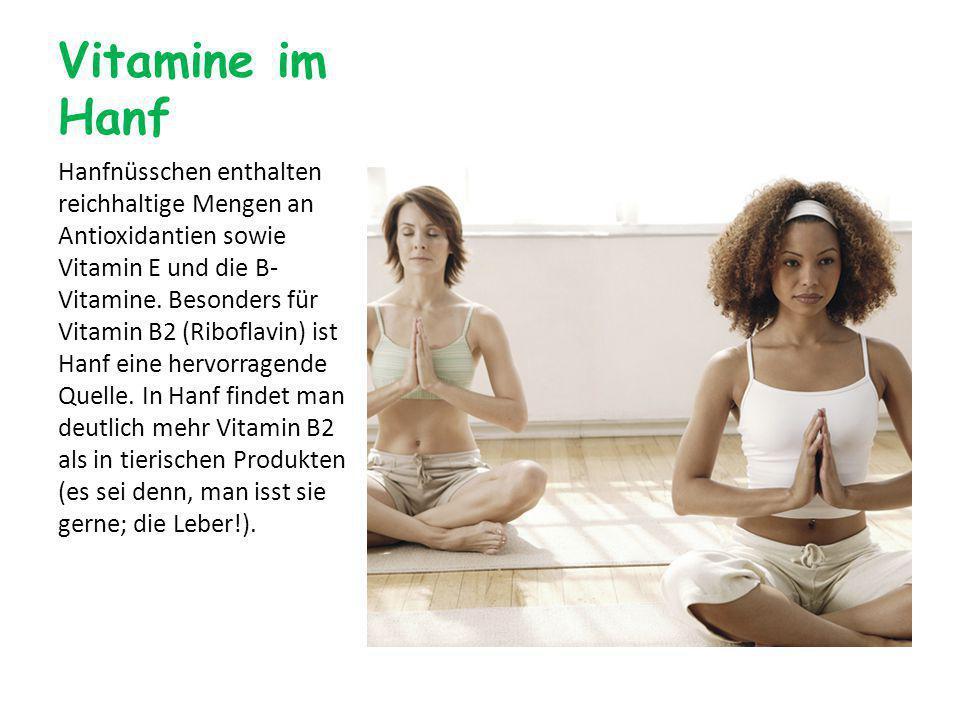 Vitamine im Hanf Hanfnüsschen enthalten reichhaltige Mengen an Antioxidantien sowie Vitamin E und die B- Vitamine.