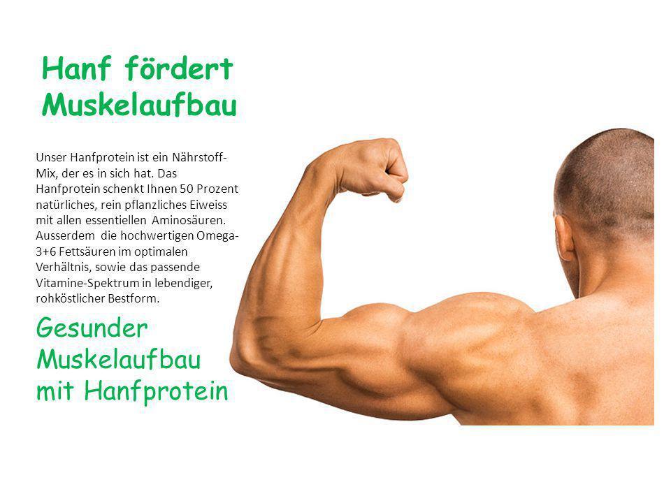Hanf fördert Muskelaufbau Unser Hanfprotein ist ein Nährstoff- Mix, der es in sich hat.