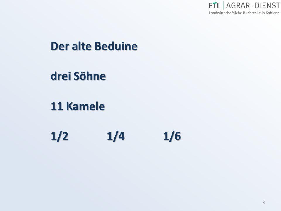 3 Der alte Beduine drei Söhne 11 Kamele 1/21/41/6
