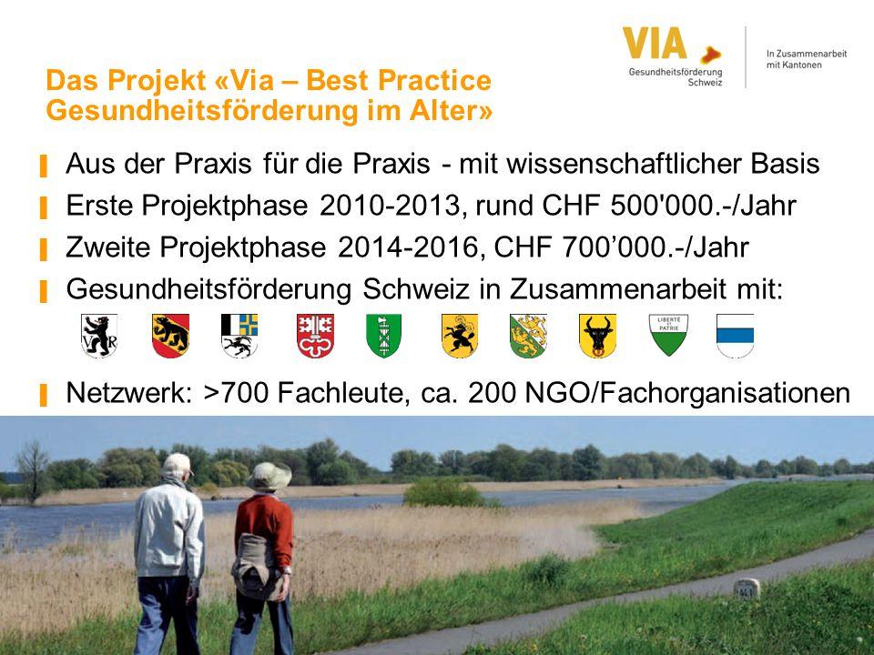 Das Projekt «Via – Best Practice Gesundheitsförderung im Alter» ▐ Aus der Praxis für die Praxis - mit wissenschaftlicher Basis ▐ Erste Projektphase 20