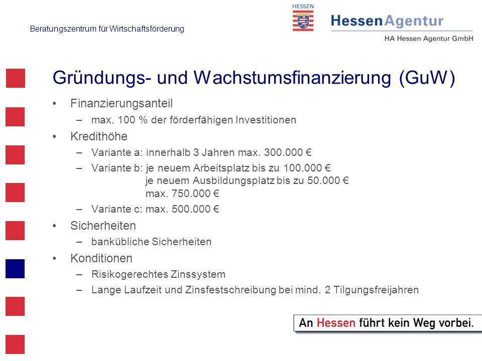 Beratungszentrum für Wirtschaftsförderung Gründungs- und Wachstumsfinanzierung (GuW) Finanzierungsanteil –max.